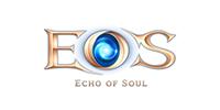 ECHO OF SOUL PHOENIX